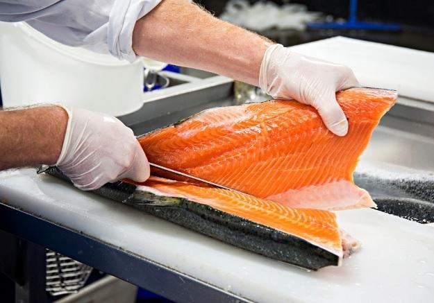 Chế biến cá